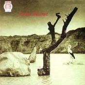 Tonton Macoute by TONTON MACOUTE album cover