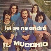 Lei Se Ne Andrà/ Il Giullare by MUCCHIO, IL album cover