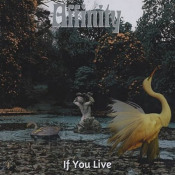 If You Live by AFFINITY album cover