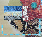 Polytown (with Mick Karn and Terry Bozzio) by TORN,DAVID album cover