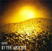 Omnio by IN THE WOODS... album cover