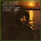 Running In The Summer Night by MECKI MARK MEN album cover