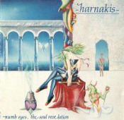 Numb Eyes, The Soul Revelation by HARNAKIS album cover