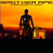 A Rare Moment Of Insight by BROTHER APE album cover