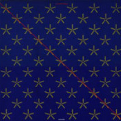 Nik Turner's Sphynx: Xitintoday by TURNER, NIK album cover