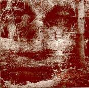 Epilog by ÄNGLAGÅRD album cover