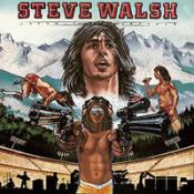 Schemer Dreamer  by WALSH, STEVE album cover