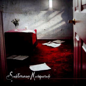 Temporary Psychotic State by SUBTERRANEAN MASQUERADE album cover