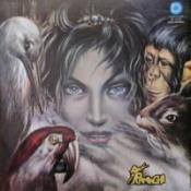 Il Lungo Cammino Dei Raminghi by RAMINGHI, I album cover