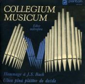 Hommage à J. S. Bach / Ulica plná plásťov do dazďa by COLLEGIUM MUSICUM album cover