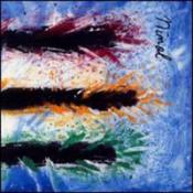 Dis Tanz  by NIMAL album cover