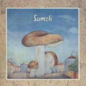 Sameti by SAMETI album cover