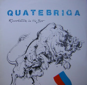 Revolution In The Zoo  by QUATEBRIGA album cover