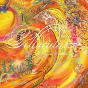 Pellucidar / A Dreamers Fantabula by ZORN, JOHN album cover