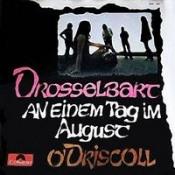 An Einem Tag Im August / O'Driscoll by DROSSELBART album cover
