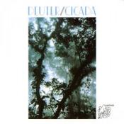 Cicada by DEUTER album cover