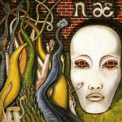 Aerolit by NIEMEN, CZESŁAW album cover