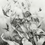 The Last Dawn by MONO album cover