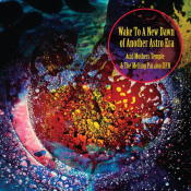 Wake to a New Dawn of Another Astro Era by ACID MOTHERS TEMPLE album cover