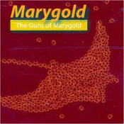 The Guns Of Marygold by MARYGOLD album cover
