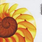 Easily Misunderstood by SAMUEL JACKSON FIVE, THE album cover