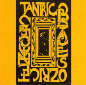 Tantric Obstacles by OZRIC TENTACLES album cover