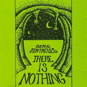 There Is Nothing by OZRIC TENTACLES album cover