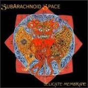 Delicate Membrane by SUBARACHNOID SPACE album cover