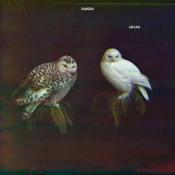 Häxan by DUNGEN album cover