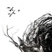 Virstele Pamintului by NEGURA BUNGET album cover