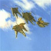 Abraxas ... Cykl Obraca Siê. Narodziny, Dzieciñstwo Pe³ne Duszy, U?miechów Niewinnych I Zdrady by ABRAXAS album cover