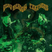 Feathers by DEAD MEADOW album cover