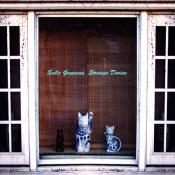 Strange Device by SALLE GAVEAU album cover