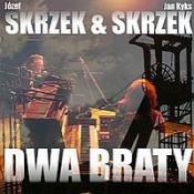 Dwa Braty (with Jan Skrzek) by SKRZEK, JÓZEF album cover