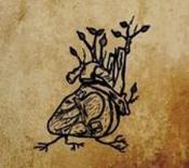 Harvest Aorta by EPHEMERAL SUN album cover