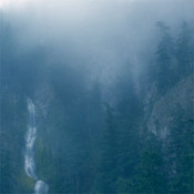 Diadem of 12 Stars by WOLVES IN THE THRONE ROOM album cover