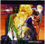 Amygdala by AMYGDALA album cover