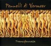 Tramedannata by PENNELLI DI VERMEER, I album cover