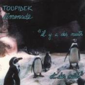 Il y a des nuits... et des nuits by TOUPIDEK LIMONADE album cover