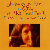 Now Is The Happiest Time Of Your Life by ALLEN, DAEVID album cover