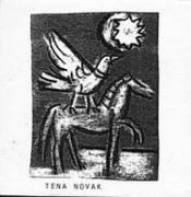 Tena Novak by TENA NOVAK album cover