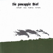 What We Have Sown by PINEAPPLE THIEF album cover