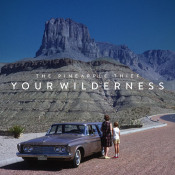 Your Wilderness by PINEAPPLE THIEF album cover