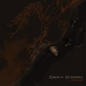 C'est Fini by CIRUELO CILINDRICO album cover
