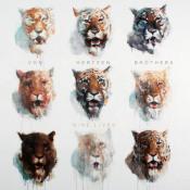 Nine Lives by VON HERTZEN BROTHERS album cover