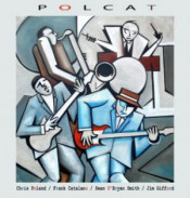 Polcat by POLAND, CHRIS album cover