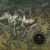 Kurki by KURKI album cover