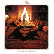 Wide Open N-Way by DAY OF PHOENIX album cover