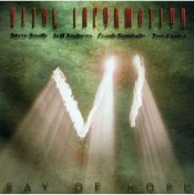 Ray Of Hope by VITAL INFORMATION album cover