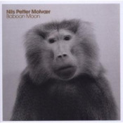 Baboon Moon by MOLVÆR, NILS PETTER album cover